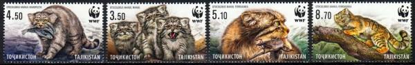 WWF Wildkatzen 2017, Ozelot