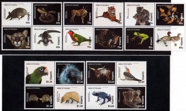 Tiere, Tiger, Papagei, Schlange
