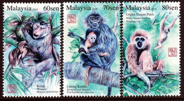 Primaten Serie 2 (16P01)