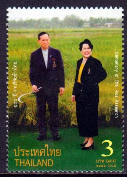 Thai Reis Forschung 2016