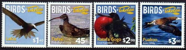 Vögel von Tokelau 2017