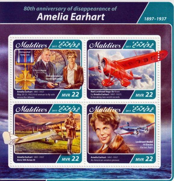 Amelia Earhart 2017, Flugzeuge