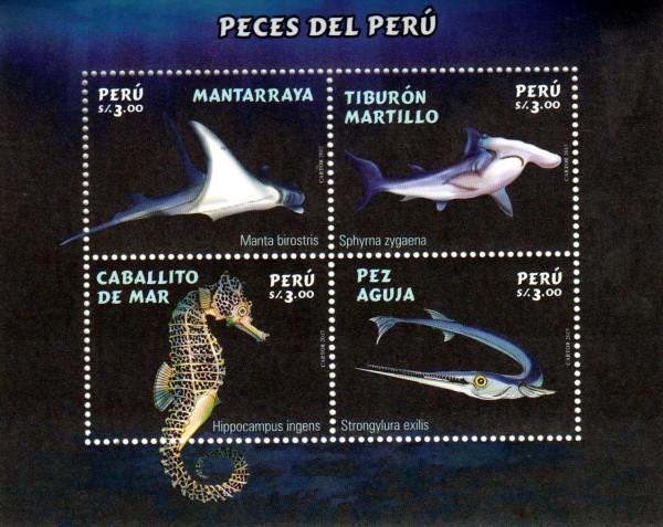 Block: Fische, Manta, Seepferdchen