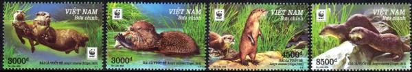WWF 2016, Otter