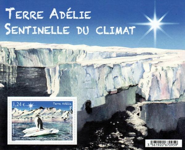 Block: Adelieland, Pinguin (15P18)